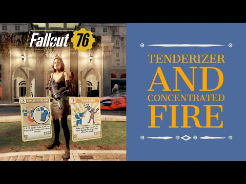 Fallout 76: How Much Damage Can You Get from: Tenderizer and Concentrated Fire Perk Cards.